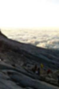 قصص الإباحية الحرة الدهون الديك